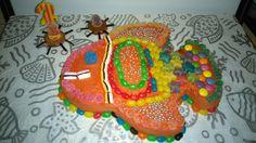 Fish  cake 🐠