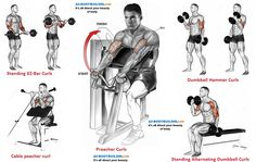 123 Best Arm Workouts Images On Pinterest