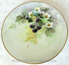 Antique~(H & Co) Heinnrich ~ Co. Selb Bavaria plate Hand painted Julius Brauer Studio~Beautiful pastel washes defines this lovely water color styled porcelain painting~Gorgeous ripened blackberries with a floral background~It bares the mark of H & Co. and Julius Brauer