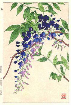 Wisteria, Blue,  by Kawarazaki Shodo  (published by Unsodo)