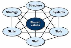 Diagnostico organizacional: 7s McKinsey de alta competitividad.