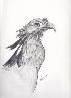 baby bird drawings  Bing Images  Tattoos I like  Pinterest