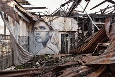 """Rone, Street artist. """"Homewrecker"""". Beauty and decay."""