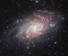 Scienzaltro - Astronomia, Cielo, Spazio: Buona notte, ma prima sogniamo assieme di volare su M33, il Triangolo