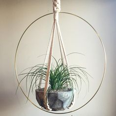 "88 Likes, 1 Comments - Macramé With Spirit ~ Stacy (@moonshadowmacrame) on Instagram: ""My Mid-Century inspired Macramé Plant Hanger ""Aten"" Solar Disc 🌙✨💕 The hoop is 27""!…"""