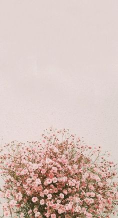 IPhone Wallpapers Spring: Naver Blog