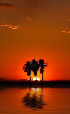 Desert Sunset | By (L Geoffroy)