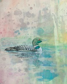 Original Loon Watercolor 8x10 by NorthwayStudio on Etsy