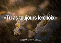 Les Beaux Proverbes – Proverbes, citations et pensées positives » » Le choix