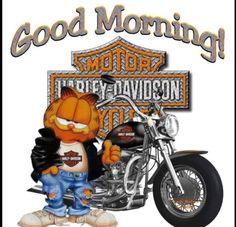 Ride fast die last :: t shirts harley davidson dyna lowrider Harley Davidson Dyna, Harley Davidson Street Glide, Harley Davidson Kunst, Harley Davidson Kleidung, Harley Davidson Quotes, Harley Davidson Pictures, Harley Davidson Wallpaper, Classic Harley Davidson, Harley Davidson Motorcycles