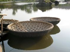 Coracle Building! | Blog | Foxglove Covert Local Nature Reserve