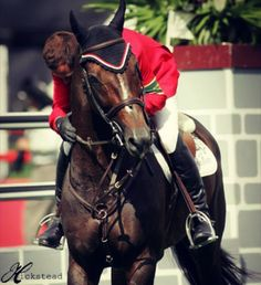 Hickstead.  Champions are not soon forgotten
