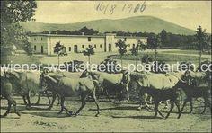 wiener-werkstaette-postkarten.com