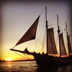 Toronto boat cruise gallery showing pictures of the Kajama. Individual, private charters, corporate, wedding and dinner cruises. Tall Ship Cruises, Toronto Travel, Cruise Boat, Tall Ships, Canada Travel, Coastal Living, Sailing Ships, Places To Travel, Gallery