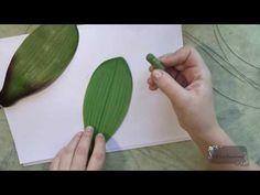 Мастер класс:Листья орхидеи из фоамирана.Автор:Юлия Козьякова.