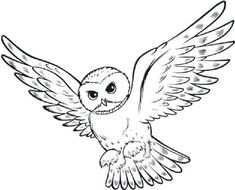Harry Potter Owl Coloring Pages from Harry Potter Coloring Pages. When children know a store book publish a Harry Potter coloring book in Indonesia, Many of them are very excited to have it soon. For the fans of Harr. Harry Potter Clip Art, Mandala Harry Potter, Colchas Harry Potter, Harry Potter Coloring Pages, Harry Potter Colors, Harry Potter Birthday, Owl Clip Art, Owl Art, Owl Outline