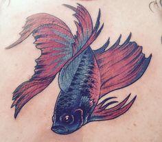 Betta fish tattoo tattoos pinterest fish tattoos for Bone head tattoo