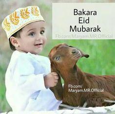 Eid Adha Mubarak, Eid Mubarak Status, Eid Mubarak Quotes, Eid Quotes, Eid Mubarak Images, Eid Mubarak Wishes, Happy Eid Mubarak, Allah Quotes, Quran Quotes