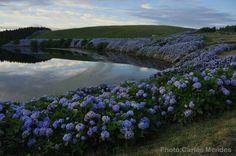 Lagoa da Lomba, Flores Island, Azores, Portugal Portugal, Portuguese, Islands, Places To Go, Paradise, River, Mountains, World, Trips