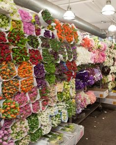 """Behind the Scenes: Shop the Flower Market with Kevin Sharkey - """"Developing your own taste will take time, and what you think you love now will likely evolve. Don't let choice become prohibitive! Go for what pleases you, and you won't go wrong."""""""