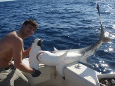 hammerhead shark  Offshore fishing charters out of Grand Isle, Louisiana with Capt. Lance Walker.  Yellow fin tuna, dorado, amberjack, wahoo, cobia, grouper, red snapper, mangrove snapper, and more! Book your deep sea fishing adventure today! Lodging available.  www.fishcommander.com