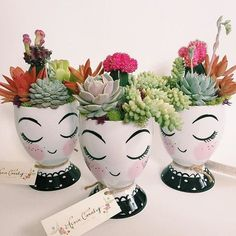 check out based out of Miami, fl . Painted Flower Pots, Painted Pots, Cactus Flower, Flower Vases, Flower Bookey, Flower Film, Face Planters, Plastic Bottle Crafts, Cactus Y Suculentas