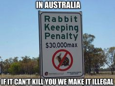 Welcome To Australian Laws