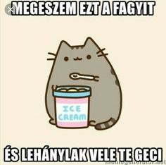 Thinking ofthe meaning of life funny cat videos - pusheen Funny Cat Memes, Funny Fails, Hilarious, Funny Videos Clean, Funny Cat Videos, Pusheen Cat, Grumpy Cat, Facebook Humor, Meaning Of Life