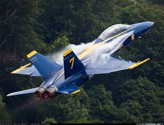 F/A-18 Blue Angel