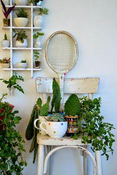 Urban Jungle Bloggers: My Plant Gang by @blogacavola la vecchia sedia della cucina