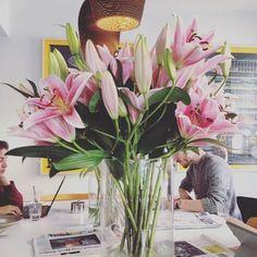 Studying / Flowers   #españa #madrid #flowers #color #pink #green #bar #cafe #study #people #white #hipster #love #malasaña #barriomalasaña #perfume #federalcafe by davidedellarupe