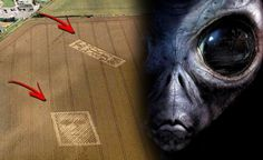 Today Let's Discuss Alleged answer ALIEN Message sent !!