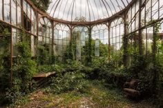 Abandoned greenhouse, shot by James Kerwin