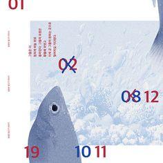 편집 디자인: 평범한 물고기 이야기