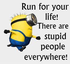 Stupid people everywhere!