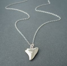 sterling silver shark tooth necklace