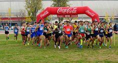 50 Cros Internacional de Catalunya Ciutat de Granollers 04-12-2016 #Foto; #Deporte; #Atletismo,  http://blgs.co/Enk2Rp