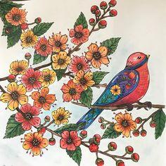 "@hobbyb_nl on Instagram: ""#ritaberman #meinspaziergangdurchdiejahreszeiten #derwentinktense and posca  #adultcoloring #adultcoloringbook #creativecoloring…"" Posca, Rooster, Animals, Instagram, Animales, Animaux, Animal, Animais, Chicken"