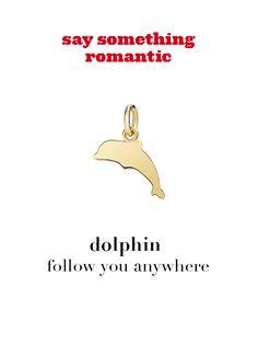 Dodo charm: dolphin - follow you anywhere