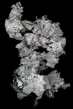 Ebon Heath and his visual poetry