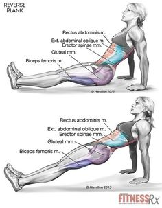 Tighten Your Core and Lower Body With Reverse Planks: h #totalbodytransformation