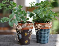 Fabric-Covered Flower Pots ~ Free Download