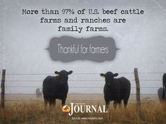 More than 97 percent of U.S. beef cattle farms and ranches are family farms.