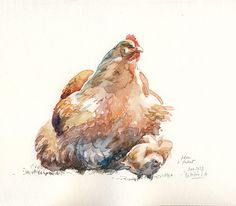 Mum Hen and  Baby Pullet, Chicken watercolor by Catalina