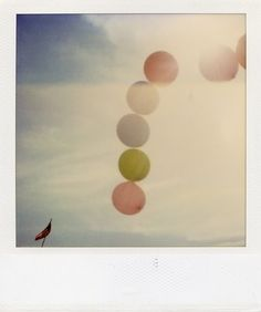 .Polaroid