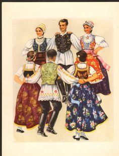 vojvodina - kolo - bačka - baranja