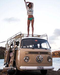 volkswagen classic cars in new zealand Vw Camper Bus, Volkswagen Bus, T1 Bus, Vw T1, Wolkswagen Van, Transporter T3, Volkswagen Transporter, T6 California, Bus Girl