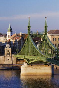 Liberty Bridge over the Danube River, Budapest, Hungary Bulgaria, Liberty Bridge, Danube River Cruise, Capital Of Hungary, Old Bridges, Historia Natural, Budapest Hungary, Covered Bridges, Countries Of The World