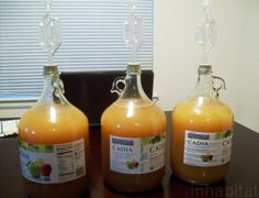 Short on time and money? Delicious, homemade, hard apple cider can still be yours this fall. Get started on homebrewing German apfelwein with this easy DIY cooking guide! Brewing Recipes, Homebrew Recipes, Wine Recipes, Hard Apple Cider, Spiced Apple Cider, Hard Cider Recipe, Sustainable Food, Sustainable Design, Apple Wine