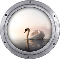 Porthole Wall Sticker Swan on the water Wall decal by StyleAwall